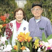 Lois and James Duffin in their greenhouse in Wyndmoor PA