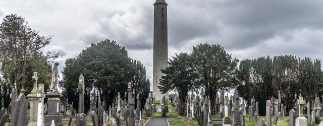 05_17_IRED_Glasnevin_1